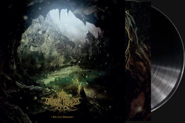 Druadan Forest - The Lost Dimension LP black wax